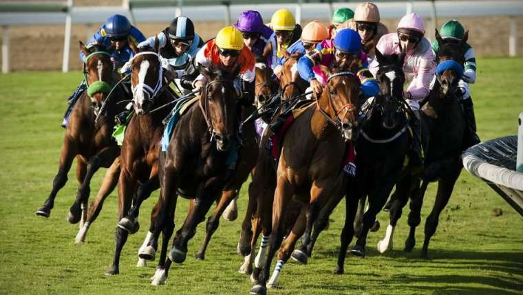Why Do Indians Like Horse Racing So Much?